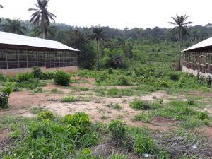 Tank Farm Commercial Property for sale Iware Village off Akinmoorin road, Onidundu Akinyele Area, ibadan. Akobo Ibadan Oyo