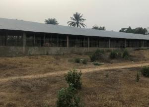 Factory Commercial Property for sale Gunlodo road, badeku community, off ife road , after Egbeda, Ibadan Ibadan Oyo