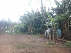 Land for rent 7, Nosagie Street Off Uwasota Rd, Benin City Edo