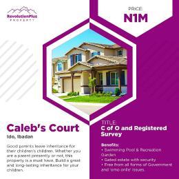 Residential Land Land for sale Caleb's Court& Garden Opposite Ido Local Govt Sec.  Ido Oyo