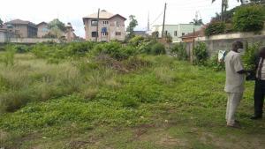 Mixed   Use Land for sale Gra Ikeja GRA Ikeja Lagos