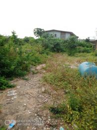 Residential Land Land for sale Gbadamosi street closer to ile oba bus stop Igando Ikotun/Igando Lagos