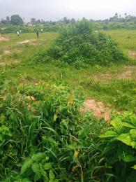 Mixed   Use Land for sale Alagbado Ifako-ogba Ogba Lagos