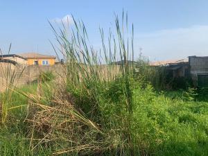 Serviced Residential Land Land for sale Oshofolarin ilaje Bariga Badagry Badagry Lagos