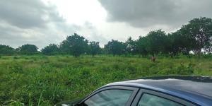 Mixed   Use Land Land for sale Elliot bus stop Iju ishaga Iju Lagos
