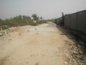 Land for sale opposite trade fair complex Ojo Ojo Lagos