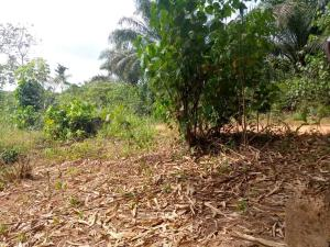Mixed   Use Land Land for sale ... Ondo West Ondo