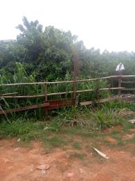 Land for sale Abesan Estate. Ipaja Ipaja Lagos