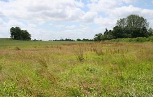 Land for sale Oloye area.  Omi Adio Ibadan Oyo