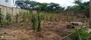 Serviced Residential Land for sale Behind Jericho Mall, Onireke Jericho Ibadan Oyo