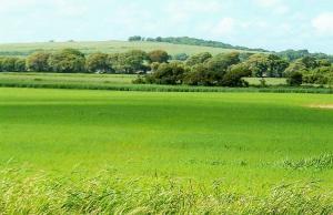 Mixed   Use Land Land for sale Osborne Foreshore Estate Ikoyi Lagos