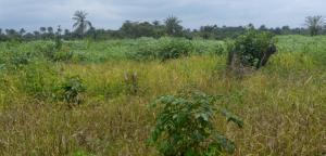 Mixed   Use Land Land for sale Opposite Day Waterman College,on the Abeokuta-Sagamu Express Way,Ogun State Oba Obafemi Owode Ogun