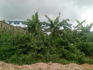 Mixed   Use Land Land for sale Road 6, New Life, Close to First Gate, Festac Amuwo Odofin Lagos
