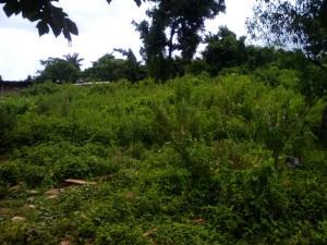 Mixed   Use Land for sale Kuffi/kelebe/aba Ida, Along Olorunda Akobo Road Akobo Ibadan Oyo