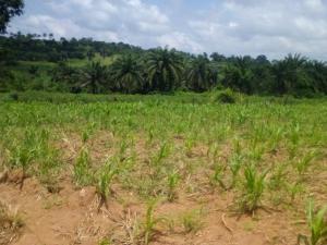 Mixed   Use Land for sale Off Iseyin Road, Osioye, Ijaye Akinyele Oyo