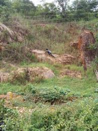 Residential Land Land for sale 1, Opic estate opic Arepo Arepo Ogun