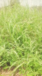 Land for sale At Onikoko Village,via Itori Papalanto Ewekoro Ogun