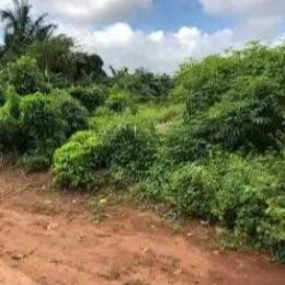 Commercial Land Land for sale Ado Awaye, Oke Iho Road Isehin Local Government, Oyo State. Iseyin Oyo