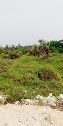 Commercial Land Land for sale   Garki 2 Abuja