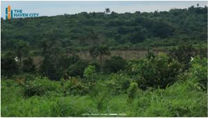 Residential Land Land for sale Odolewu Epe Epe Road Epe Lagos