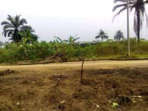 Mixed   Use Land Land for sale Estate Old GRA Port Harcourt Rivers