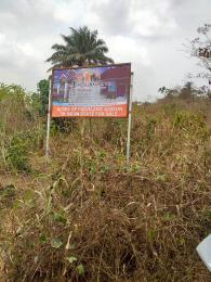 Commercial Land Land for sale Diamond estate isiun Ifo Ogun
