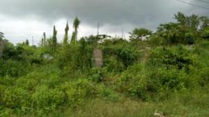 Mixed   Use Land Land for sale Tipper Garage, Chinese farm compay Agbara Agbara-Igbesa Ogun