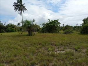 Mixed   Use Land Land for sale Ode Omi LaCampaigne Tropicana Ibeju-Lekki Lagos