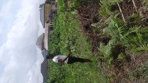 Residential Land Land for sale Cele 1 bustop Ijeododo Ijegun Ikotun/Igando Lagos