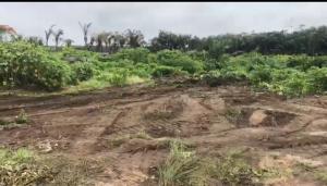 Mixed   Use Land Land for sale Ise town Ibeju-Lekki Lagos