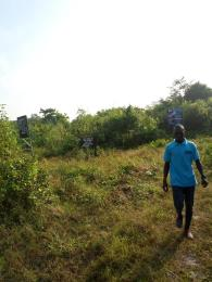 Land for sale Oriba Village Eleranigbe Ibeju-Lekki Lagos