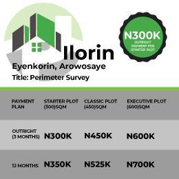 Serviced Residential Land Land for sale Eyenkorin Arowosaye Ilorin Kwara state Ilorin Kwara