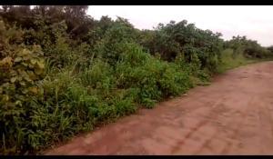 Mixed   Use Land Land for sale Awka North Local Government. Awka North Anambra