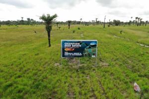 Mixed   Use Land Land for sale Champion Seed Estate Ode-omi LaCampaigne Tropicana Ibeju-Lekki Lagos
