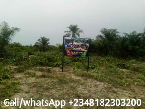 Commercial Land Land for sale llamija Area of Ibeju Lekki Free Trade Zone Ibeju-Lekki Lagos