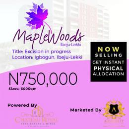 Mixed   Use Land Land for sale IGBOGUN, IBEJU LEKKI, LAGOS  Akodo Ise Ibeju-Lekki Lagos