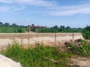 Mixed   Use Land Land for sale Fortune Garden Estate Obinze Owerri Imo
