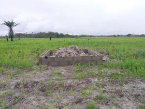 Mixed   Use Land Land for sale Yellow Land Courts in Orimedu Ibeju Lekki  Free Trade Zone Ibeju-Lekki Lagos