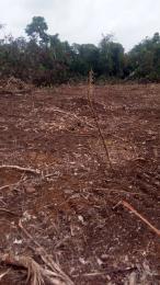 Serviced Residential Land Land for sale Agbainaodida village eziora Ozubulu Ekwusigo Anambra