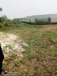 Land for sale Along Airport road Close to Sam Mbakwe Airport Owerri Imo