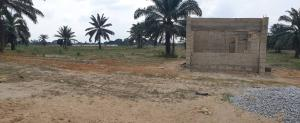 Land for sale DIAMOND ESTATE  Free Trade Zone Ibeju-Lekki Lagos