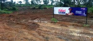 Mixed   Use Land Land for sale Ekpene Ukim, Uruan LGA,Uyo. Uyo Akwa Ibom