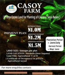 Land for sale - Ode Lemo Sagamu Ogun