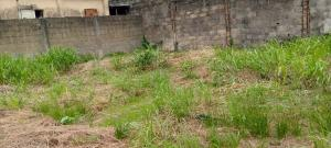 Land for sale Off demurin  Ketu Lagos