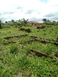 3 bedroom Residential Land Land for sale Egueka after Egba Junction Idunmwungha town Benin-Auchi road Uhunmwonde Edo