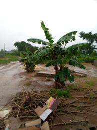 Land for sale Olope meta , imota  Ikorodu Ikorodu Lagos