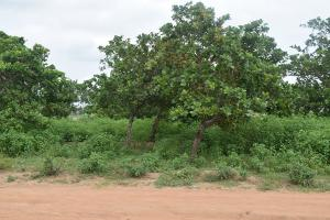 Residential Land for sale Lugbe Extension Lugbe Abuja