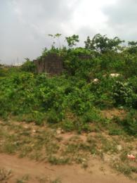 8 bedroom House for sale Peace & Progress Estate Ikorodu Ikorodu Lagos