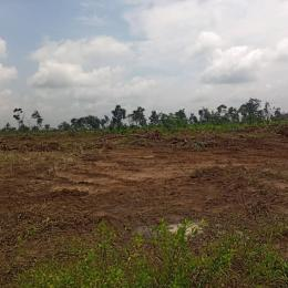 Residential Land Land for sale Ipo/abara Port Harcourt Rivers