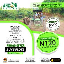Industrial Land Land for sale Lanlate Ibadan Oyo